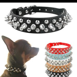 Accessories - For your fur baby Spiked dog collar